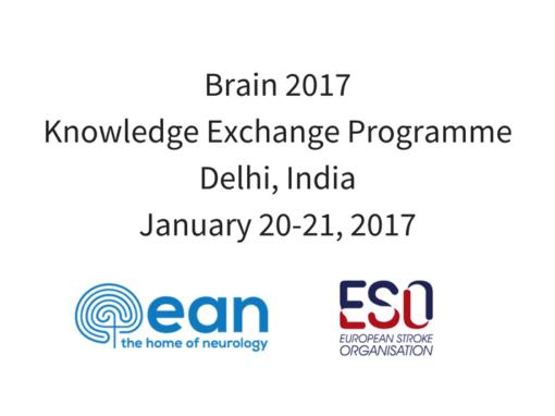 Brain 2017