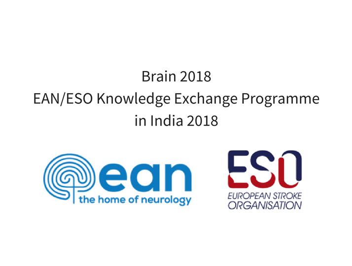Brain 2018