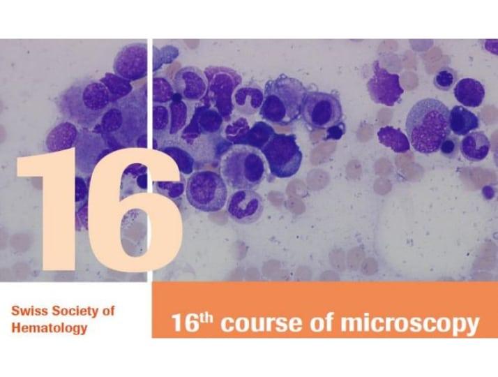 Mikroskopierkurs 2019