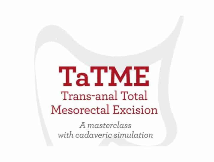 TATME 2019