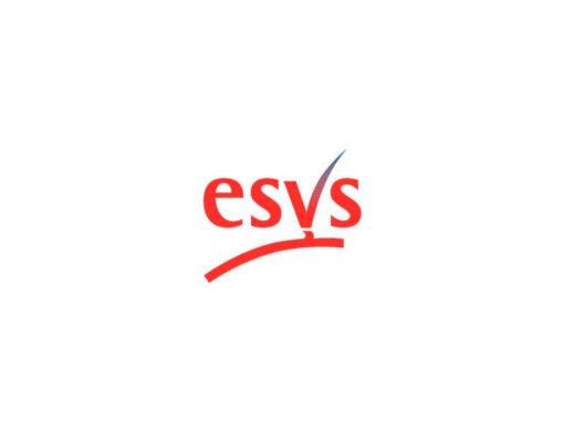 ESVS 2020
