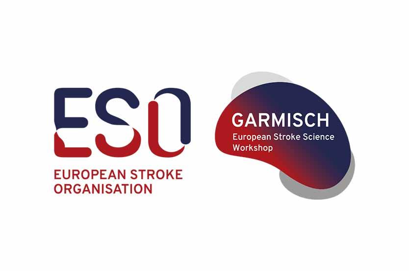 Garmisch-Stroke-Science-Workshop-2021