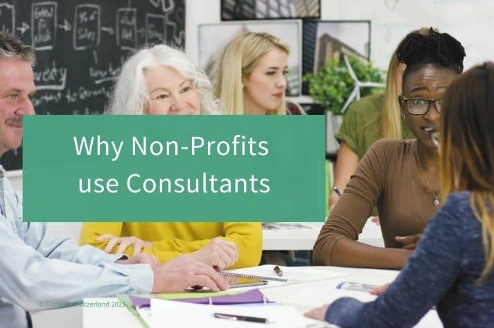 non-profit consultant